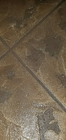DecorativeConcrete4-230x483.jpg