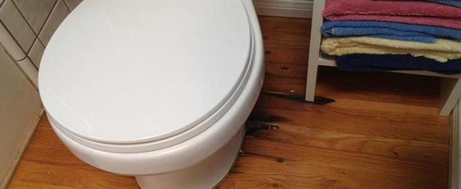 Water Damage To A Hardwood Floor Around The Toilet